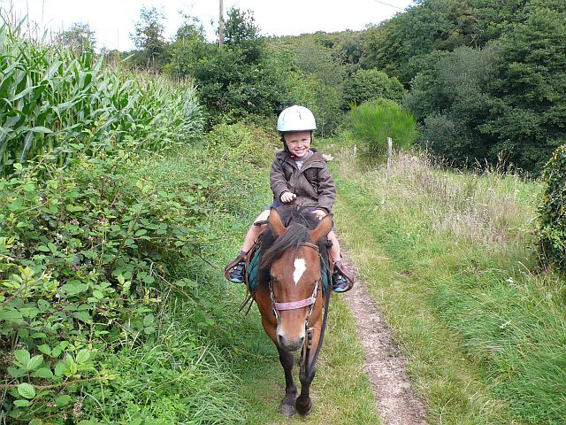 Pony rides for young children